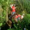Artenvielfalt präsentiert von der Grünen Schule