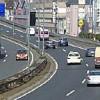 Am Ende besorgt der Artenschutz Marburg Autobahnanschluß
