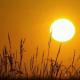 Am Samstag Hitzewarnstufe 2  – gesundheitliche Gefahren drohen