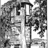 Grimms Märchen und Japanische Märchenforscher