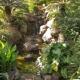 Teneriffa als Insel der Biodiversität