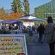 Blauer Himmel, orange Kürbisse und Besucherströme