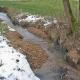 Vortrag Warum brauchen wir naturnahe Gewässer?