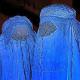 Rechtsgespräche über Burka, Kopftuch und Grundgesetz