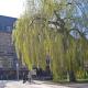 Stadtraum Marburg im Frühling