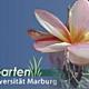 Gerichtlicher Vergleich zum Botanischen Garten hat Rechtskraft