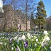 Zum Erhalt des Alten Botanischen Gartens und der derzeitigen Diskussion in städtischen Gremien