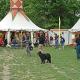 7. Bildungsfest auf den Lahnwiesen startet am 12. Juni