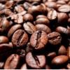 Chili & Schokolade: Der Geschmack Mexikos