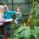 Naturforscherexpedition in der Grünen Schule des Botanischen Gartens