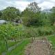 Impulse für die Zukunft des Botanischen Gartens