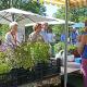 Argumente zum Erhalt der Ausbildungsplätze im Botanischen Garten – übermittelt von einer Berufsschullehrerin aus Kirchhain