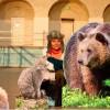 Fräulein Brehms Tierleben ist ein UN-Dekade-Projekt Biodiversität