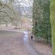 Botanischer Garten Marburg, alt und neu – Zukunftsfragen