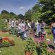 Pflanzenmarkt im Botanischen Garten mit Fokus auf Bienenpflanzen