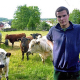 Das Ochsenfest in Wetzlar und das Verschwinden der Ochsen im Alltag