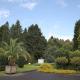 Bäume der Jahre – Führung im Botanischen Garten am 7. September