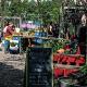 Urban Gardening in Berlin als Miniaturutopia – wo eine neue Art urbanen Lebens sich entwickeln kann