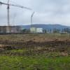 Es war einmal ein Wald – Nach der Vitos-Rodung in Marburg