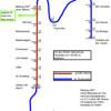 Wie eine Regio-Tram Gießen-Marburg auch die Lahnberge erschließen kann