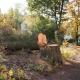 Baumfrevel in Marburg – Ein paar Äste abgerissen und eine vielhundertjährige Eiche gefällt