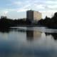 Still ruht der Schwanensee – Zum Start der Semesterferien