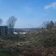 Denkmalgeschützter Vitos-Park in Cappel wird weiter zerstört