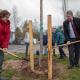 Klimaschutzprojekt Richtsberg-Gesamtschule:  Achtklässler experimentieren und  pflanzen Bäume auf Schulgelände