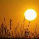 Durchbruch in der künstlichen Photosynthese ermöglicht es den Wissenschaftlern, die Energie der Sonne als Brennstoff zu speichern