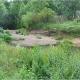 Naturschutz-Erlebnistage – Heimische Tier- und Pflanzenwelt in Marburg entdecken