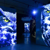Heldenreise durch den »FinsterWald« – GRIMMWELT-Ausstellung entführt in einen Märchenwald aus Licht und Schatten