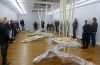 """""""Mileu und Fazies"""" in der Willingshäuser Kunsthalle – Emilia Neumann präsentiert ihre Werke als Stipendiatin"""