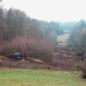 Ausbau der A49: DEGES bricht Wort mit Baumfällarbeiten im Dannenröder Forst und Maulbacher Wald