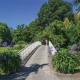 Insel Siebenbergen in der Karlsaue ab 1.Mai geöffnet: Magnolien, Rhododendren und Schwanenküken warten