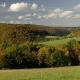 Speicherung von Kohlenstoff im Ökosystem und Substitution fossiler Brennstoffe Klimaschutz mit Wald
