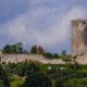 Stadt Wetter erhält Denkmalförderung für die Burgruine Mellnau