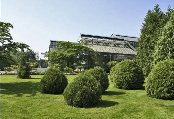 Bäume, Gras und Gewächshäuser