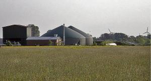 Industrielle Landwirtschaft mit Monokulturen, sei es um Energiepflanzen anzubauen, trägt maßgeblich zur Verarmung der Biodiversität bei – hier eine landwirtschaftliche Biogasanlage im Ebsdorfergrund. Sternbald-foto Hartwig Bambey
