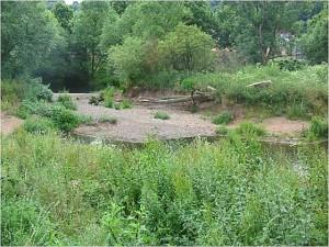 Renaturierung Flußlauf Lahn im Berich Auf der Weide in Marburg. (Foto H.Diehl)