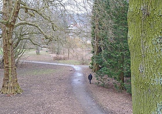 dbau0302_0083-dbau0302_0083-Botanischer Garten-alt