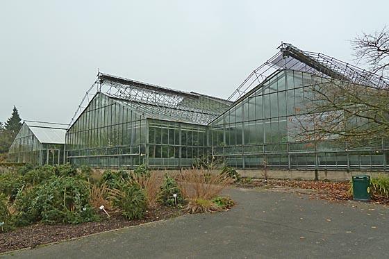 dbaz1116_0024-Gewaechshaeuser-Botanischer-Garten