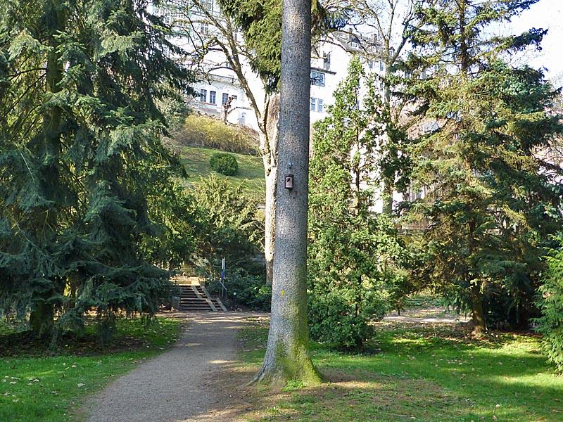 dbav0314_0030-Alter Botanischer Garten