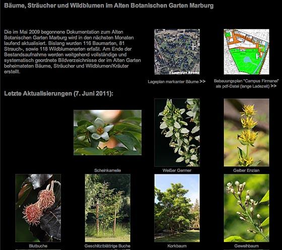 Pflanzendokumentation ABG