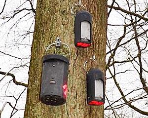 Fledermauskästen sind unterschiedlich groß, damit sie auch von den verschiedenen Fledermausarten angenommen werden. Foto Tina Eppler