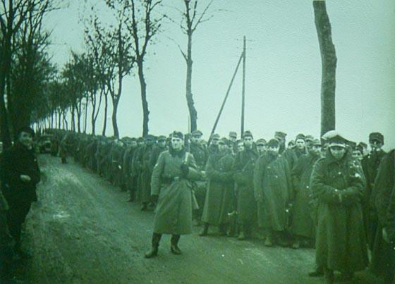 Kriegsgefangene 1939 dbas0522_0023