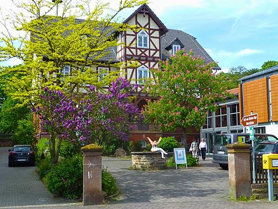 Blühender Flieder und Kastanie vor Fachwerkkulisse in Willingshausen und mittendrin eine Nana. Sternbald-Fotografien von Hartwig Bambey © 2016